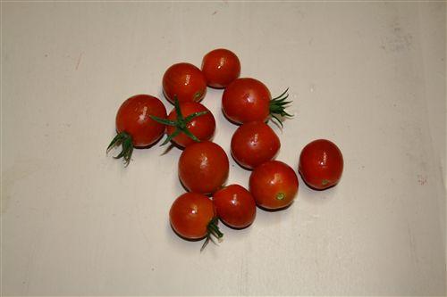 ミニトマト収穫 003_R.jpg
