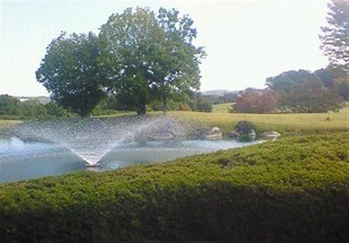 噴水、紅葉_R.jpg