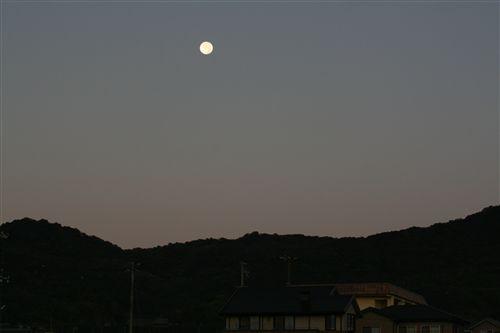 早朝西空の月 007_R.jpg