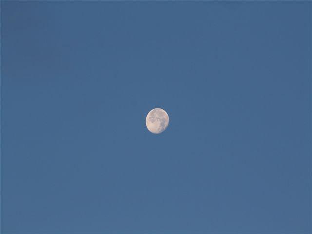 29日朝の月アップ 002_R.jpg