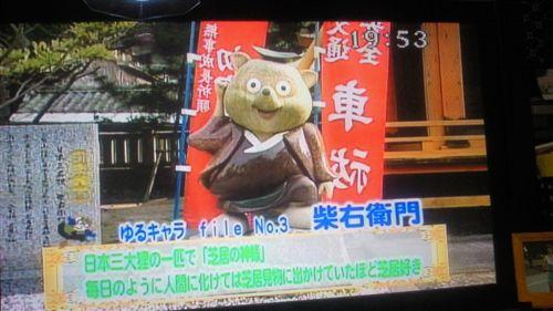 20110429柴右衛門_R.jpg