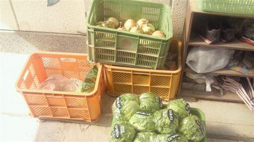20110518戴いた野菜達_R.jpg