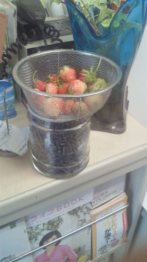 20110531今日の収穫_R.jpg