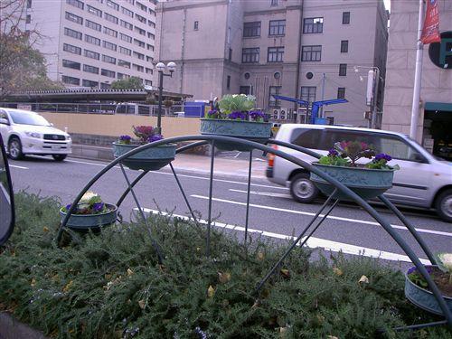 神戸植込み 002_R.jpg