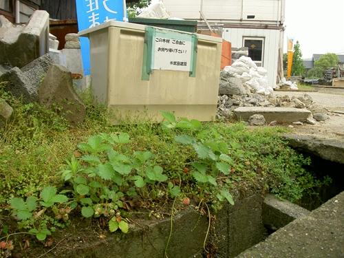 廃棄物イチ_R.JPG