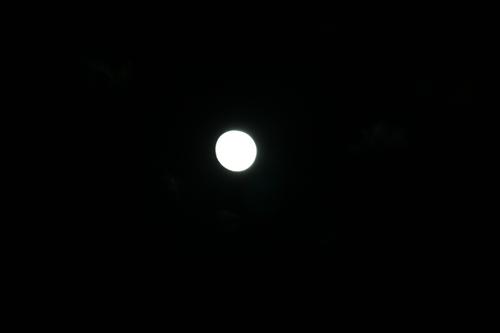 満月_R.JPG