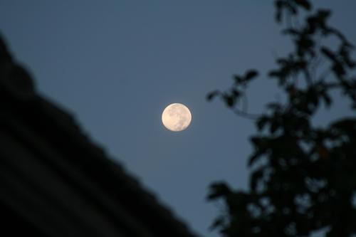 月&屋根.JPG