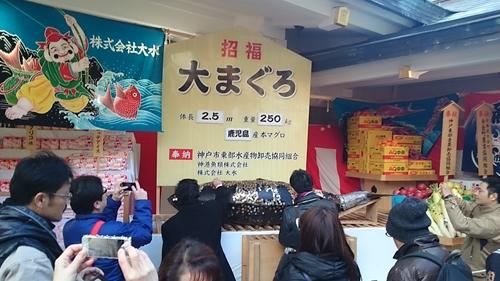 大マグロ (2)_R.JPG